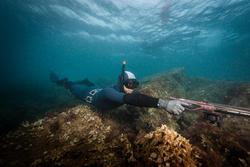 Penstringer voor harpoenvissen rvs - 1107909