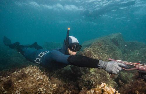 """Nos palmes d'apnée/chasse sous-marine testées par """"Plongeurs International"""""""