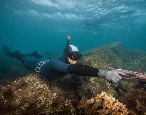 Le sac Subea testé par Secrets de plongée
