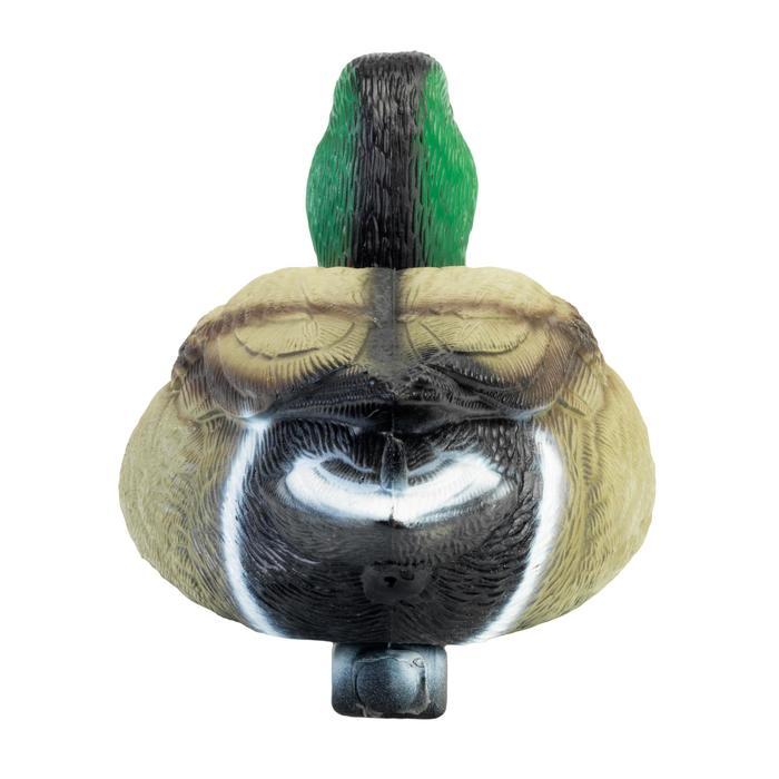 Lokvogel wilde eend mannetje