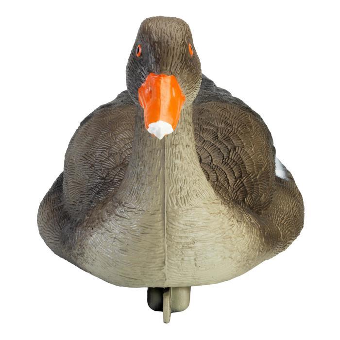 Lokvogel grauwe gans
