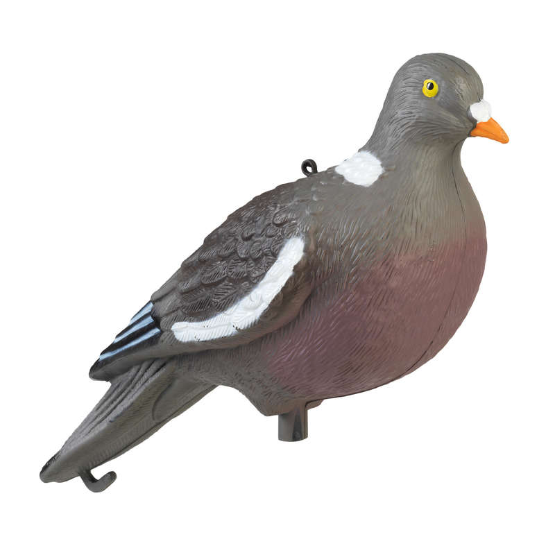 DECOYS & CALLS PIGEON Shooting and Hunting - 3D PIGEON DECOY NO BRAND - Hunting Types