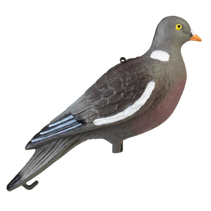 Lokvogel duif apr19