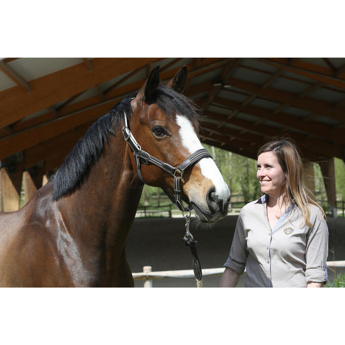 Halster Performer ruitersport bruin/beige - pony's en paarden