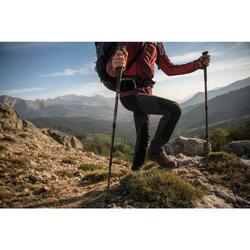 Chaussures de trekking TREK500 homme