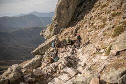 Topje voor trekking dames Techwool 210 - 1123377