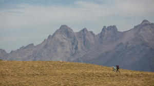 teaser-montagne-trekking-adultes