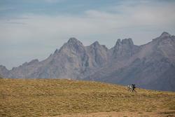 Topje voor trekking dames Techwool 210 - 1123401