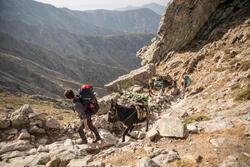 Topje voor trekking dames Techwool 210 - 1123403