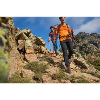 Baton de randonnée HIKE 100 - 1124238