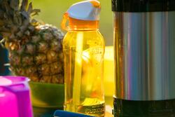 Drinkfles voor wandelingen 900 sportdop drinktuitje 0,8 l plastic (tritan) - 1124266
