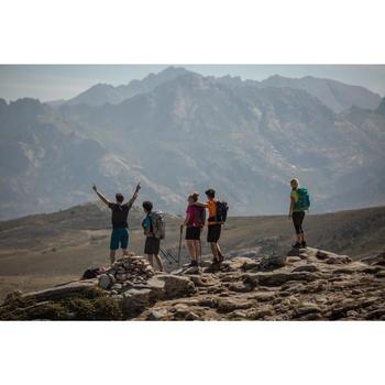 Tee Shirt Randonnée montagne MH100 manches courtes homme Gris Foncé - 1124270