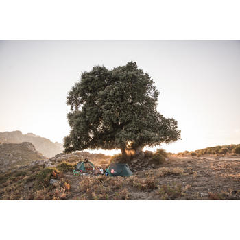 Tienda de campaña Quechua 2 SECONDS verde | 2 personas