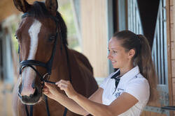 Hoofdstel + teugels Edimburgh ruitersport - pony en paard - 1126005