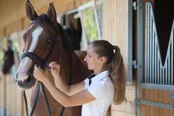 Hoofdstel + teugels Edimburgh ruitersport - pony en paard - 1126019