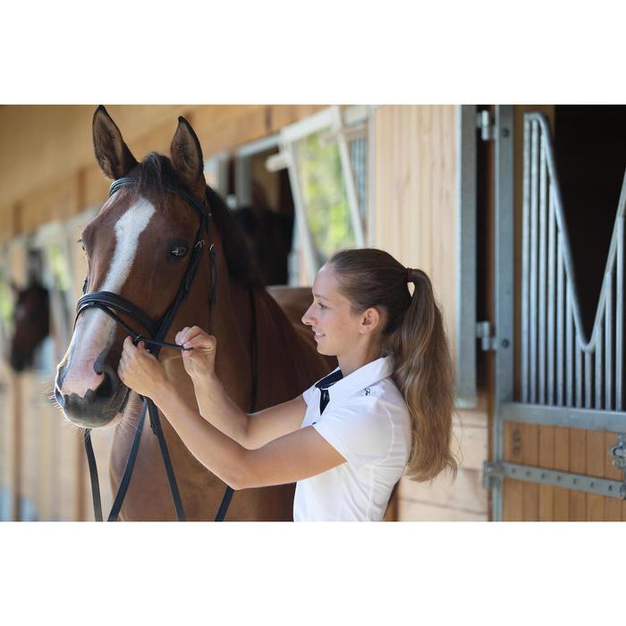 Filet + rênes équitation cheval et poney EDIMBURGH - 1126019