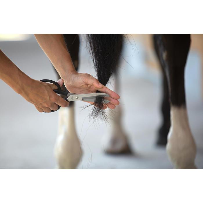 Ciseaux de pansage équitation cheval et poney - 1126075