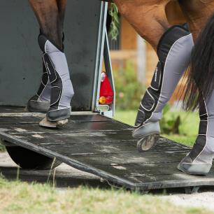 Transportgamaschen schützen das Pferdebein beim Verladen