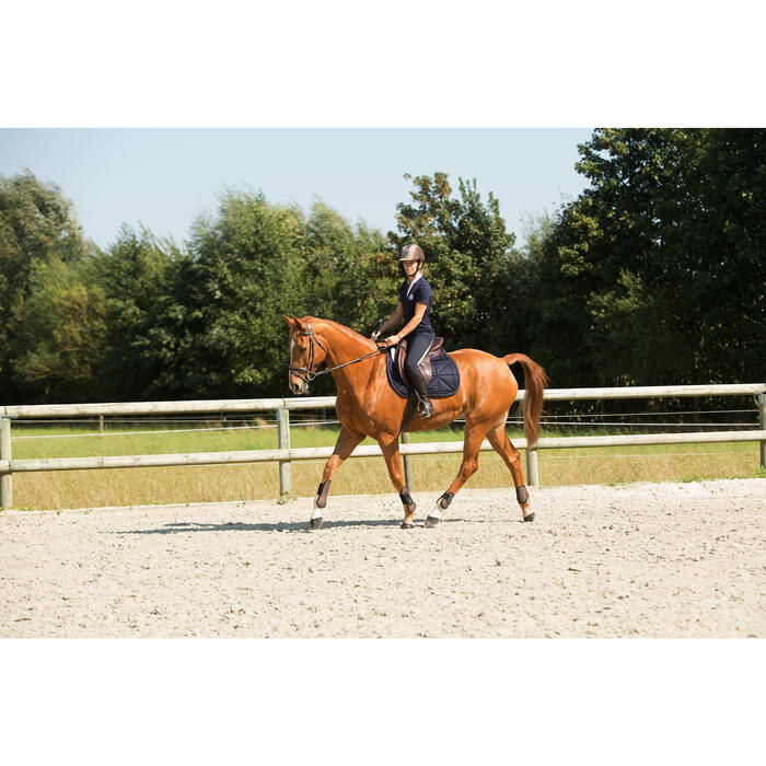 Filet + rênes équitation RECALL - poney et cheval - 1126418