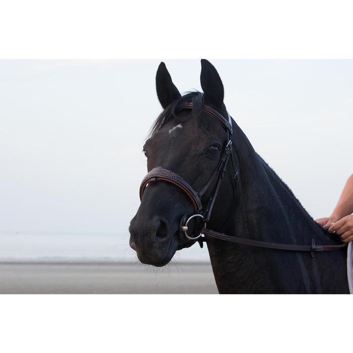 Filet + rênes équitation PULL BACK - taille cheval - 1126441
