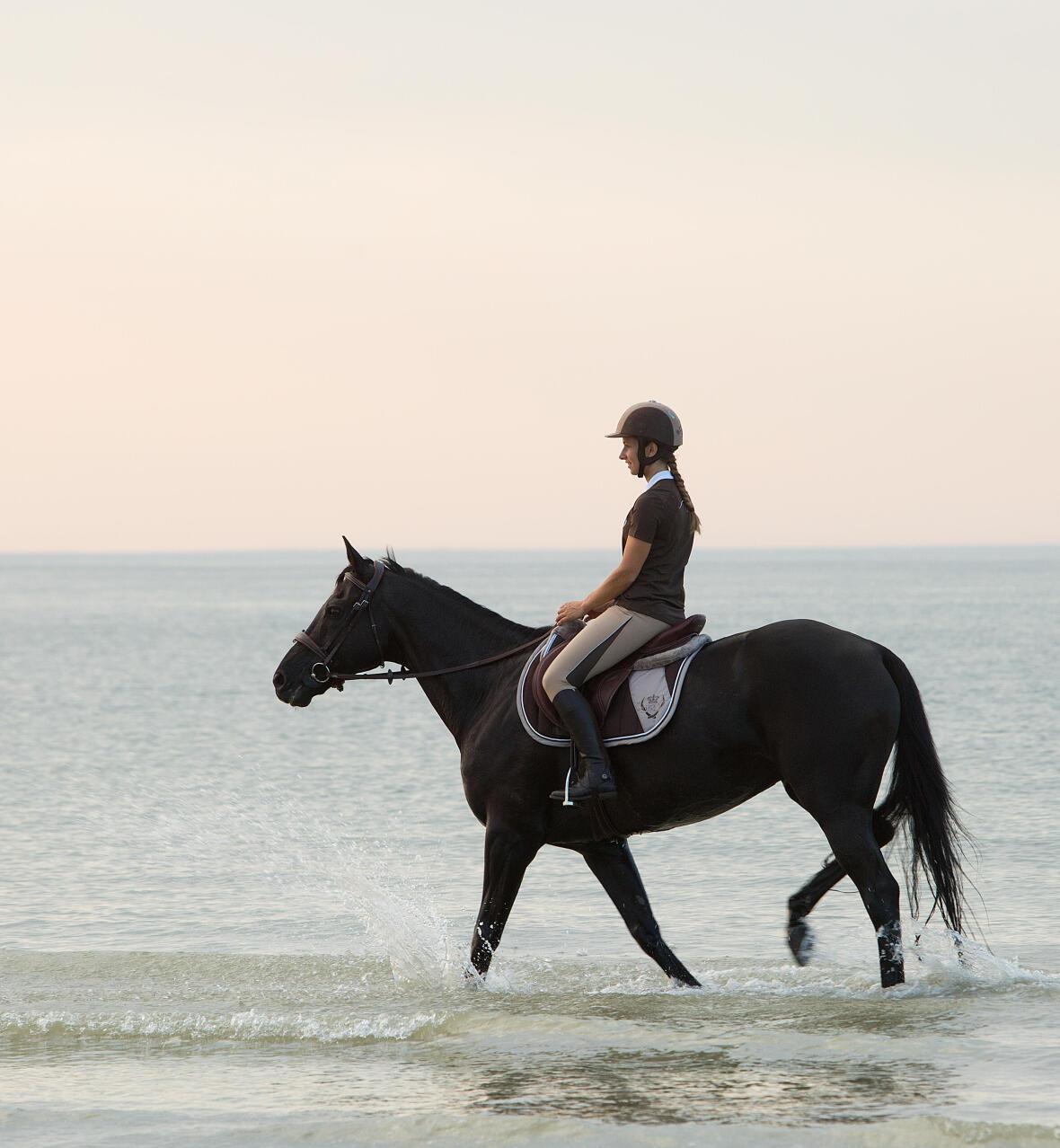 Les joies des promenades à cheval