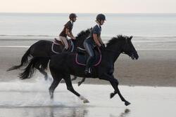 Hoofdstel + teugels Edimburgh ruitersport - pony en paard - 1126505