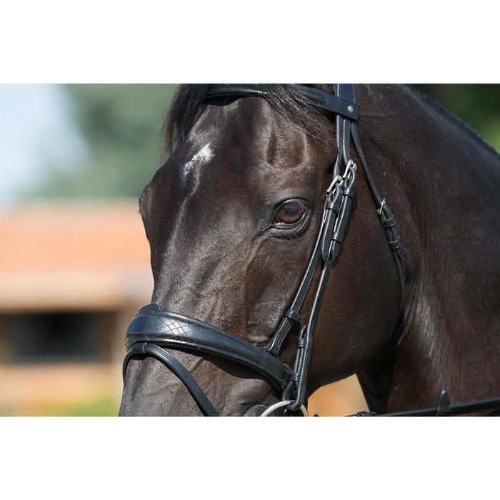 Filet + rênes équitation PULL BACK - taille cheval - 1126597
