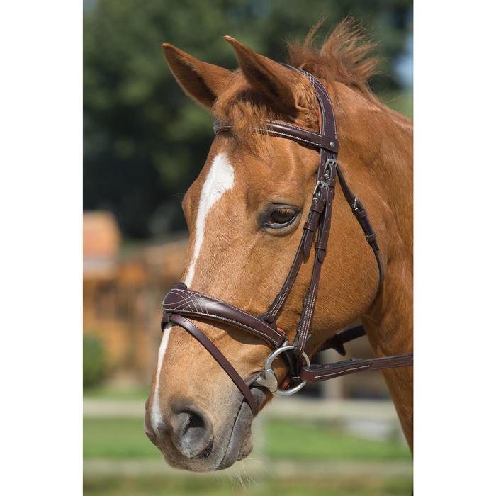 Trense und Zügel Pull Back Pferd braun