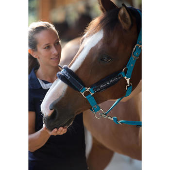 Licol + longe équitation poney et cheval WINNER - 1126633