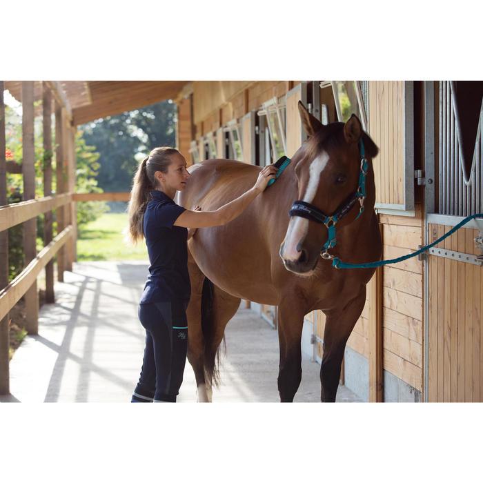 Licol + longe équitation poney et cheval WINNER turquoise