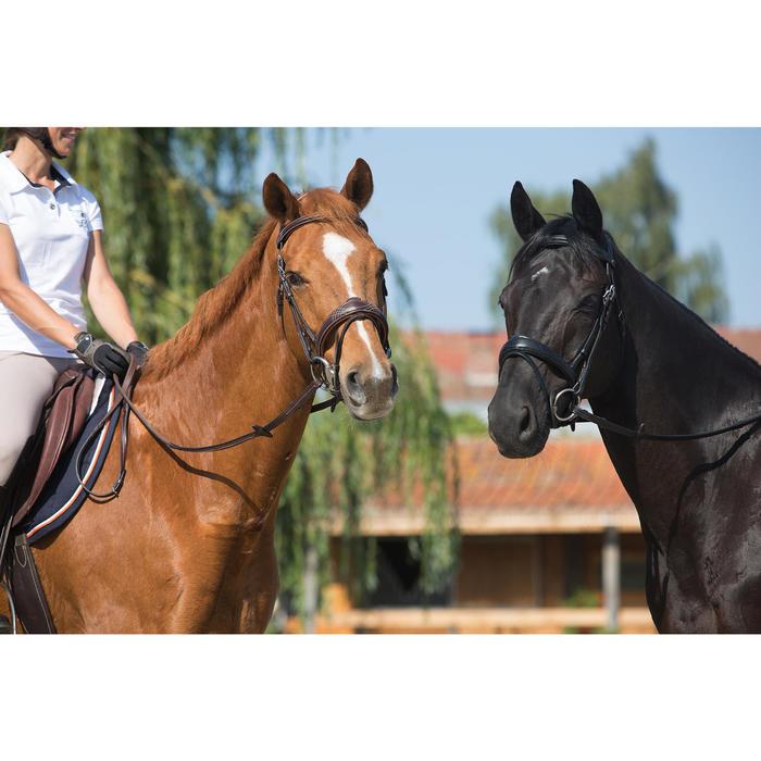 Filet + rênes équitation PULL BACK - taille cheval - 1126653