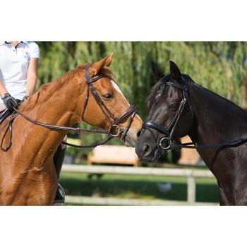Filet + rênes équitation PULL BACK - taille cheval - 1126666