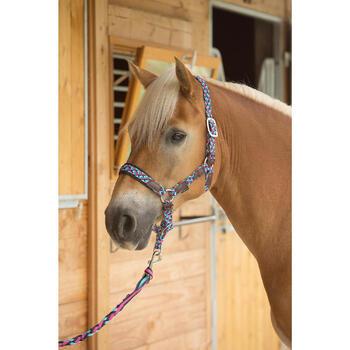 Cabestro equitación poni y caballo PLAIT azul turquesa