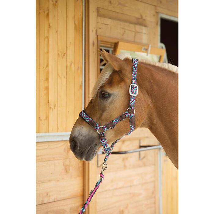 Licol équitation poney et cheval PLAIT - 1126973