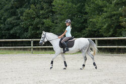 Peesbeschermers Soft pony en paard zwart 2 paar - 1127020