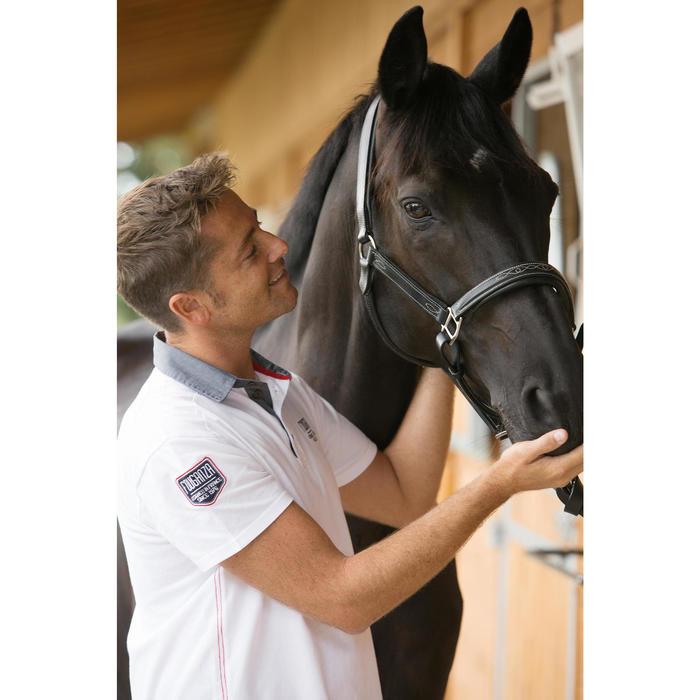 Licol équitation poney et cheval ROMEO cuir - 1127121