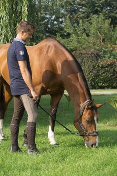 Licol + longe équitation poney et cheval WINNER - 1127156