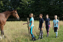 Kinderpolo Horseriding met korte mouwen en borduursel, ruitersport - 1127159