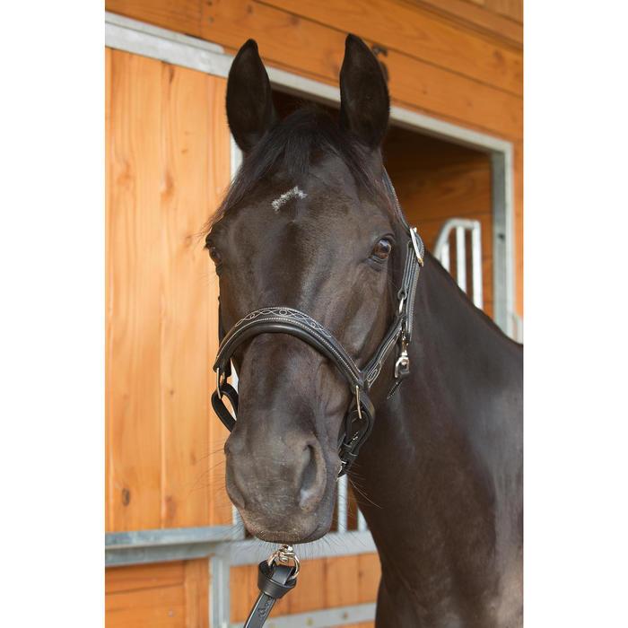 Licol équitation poney et cheval ROMEO cuir - 1127215
