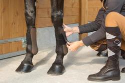 2 open peesbeschermers ruitersport pony en paard Riding - 1127219