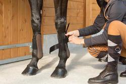 Paardrijkousen Losanges volwassenen 2 paar - 1127222