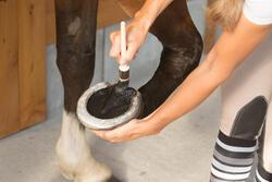 Zwarte hoefzalf voor onderhoud ruitersport paarden en pony's 500 ml - 1127223
