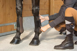 2 open peesbeschermers ruitersport pony en paard Riding - 1127227