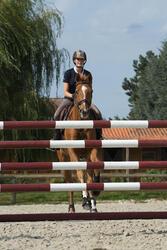 Hoofdstel + teugels Tinckle ruitersport bruin - pony en paard - 1127252