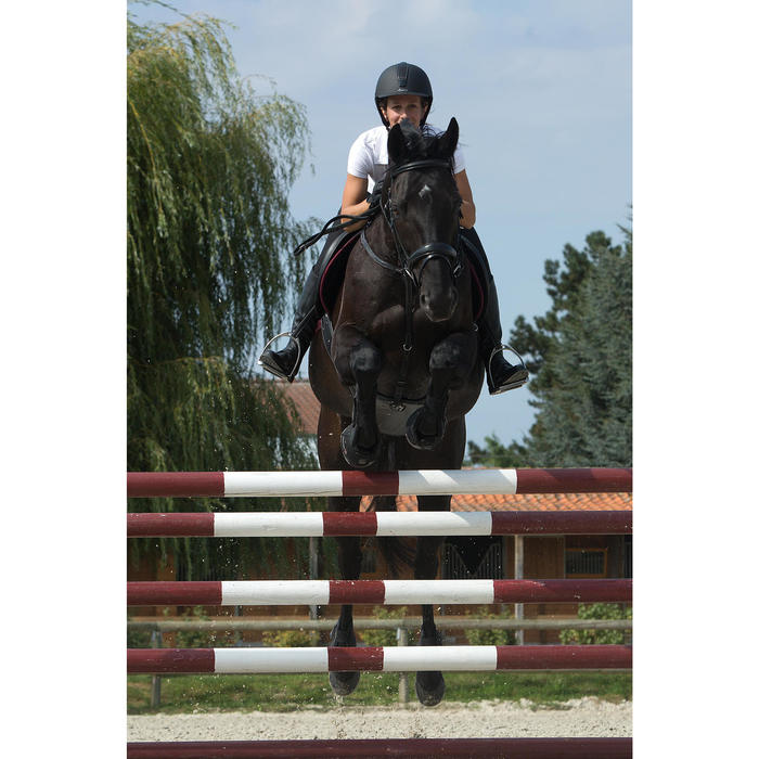 Sangle bavette cuir équitation poney et cheval ROMEO - 1127256