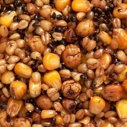 Zaden voor karpervissen Seed Mix 1,5 l