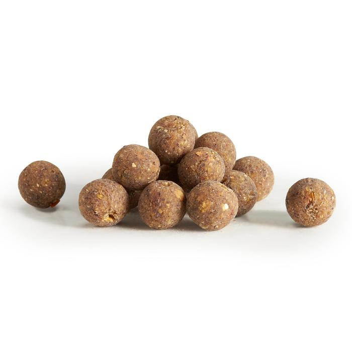 Boilies pesca de la carpa NATURAL MUSSEL 14 mm 1 kg