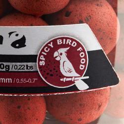 Schwimmboilies Karpfenangeln Spicy Birdfood 100 g 14/18 mm