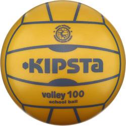 Volleybal V100