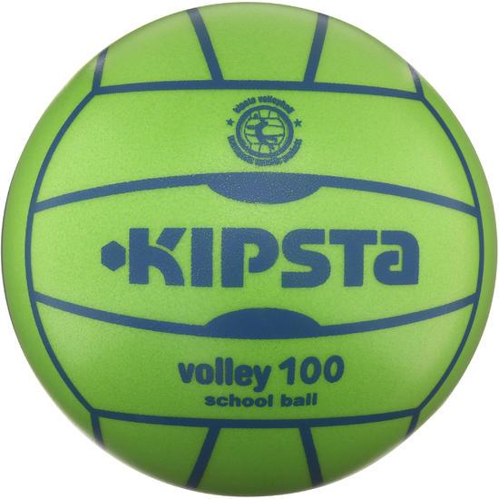 Volleybal V100 - 1136342